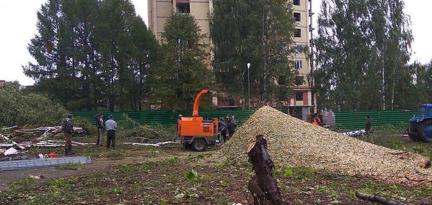 В Ижевске у Дворца пионеров спилили деревья