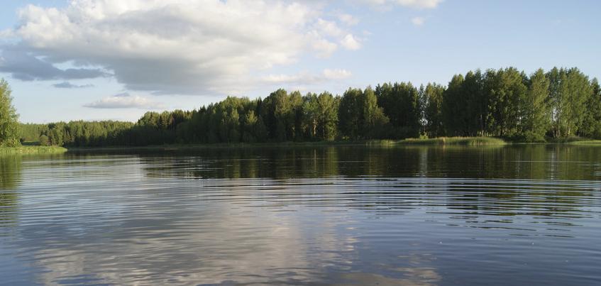 В Удмуртии на Ярском пруду может появиться дом Маши и Медведя