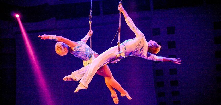 Встреча с известным автором Полиной Гладыш и цирк «Шоу гигантских фонтанов»: чем заняться в Ижевске с 26 сентября