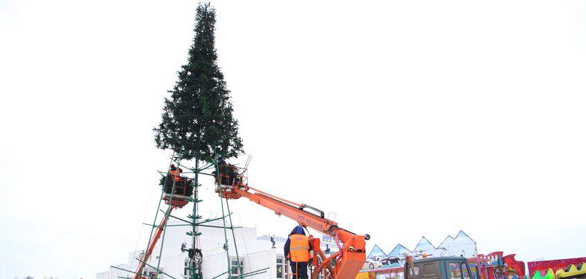 Главную ёлку Ижевска планируют открыть 24 декабря
