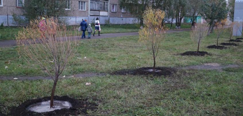 С 15 по 22 октября в Ижевске пройдут субботники