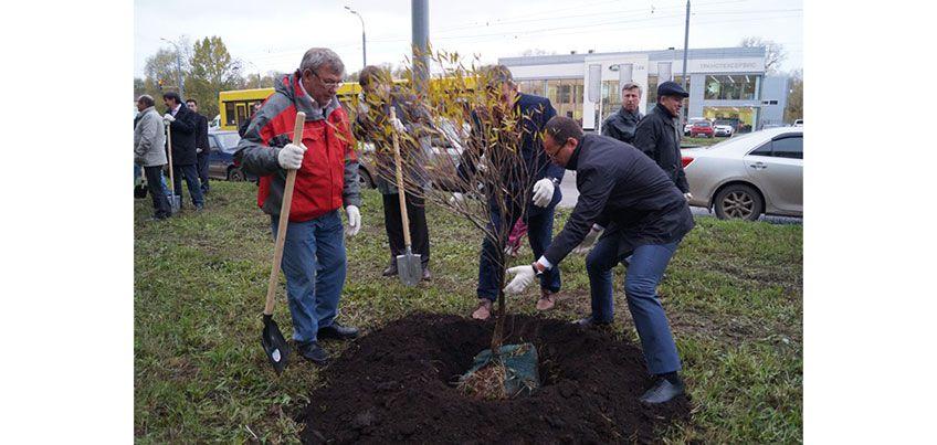 В рамках субботника в Ижевске провели акцию по высадке деревьев