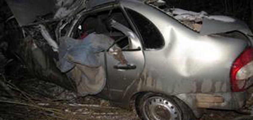 В Малопургинском районе Удмуртии произошло смертельное ДТП