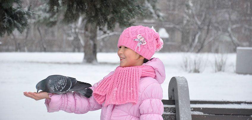Первая половина декабря в Ижевске будет теплой