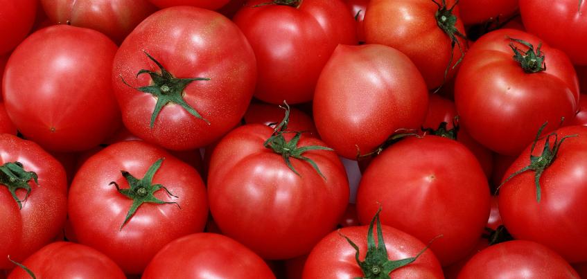 250 килограммов санкционных томатов обнаружили в Ижевске