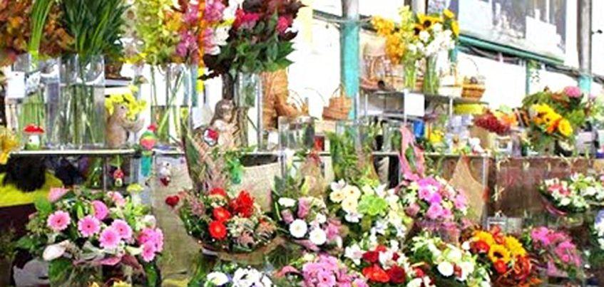 975 штук зараженных кенийских цветов уничтожили в Удмуртии