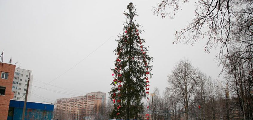 17 декабря в Индустриальном районе Ижевска откроется Новогодняя елка