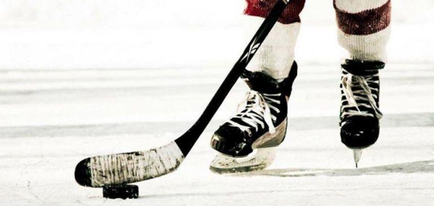 В Ижевске планируют провести соревнования за кубок Госсовета Удмуртии по хоккею