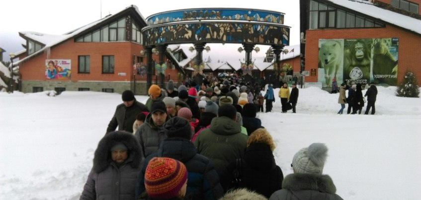 Фотофакт: Сотни ижевчан выстроились в очередь, чтобы бесплатно сходить в Зоопарк
