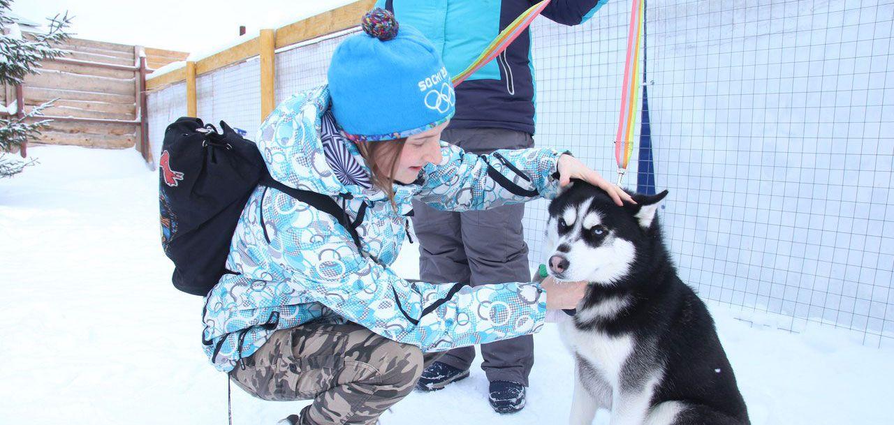 В Удмуртии прошли гонки на собачьих упряжках
