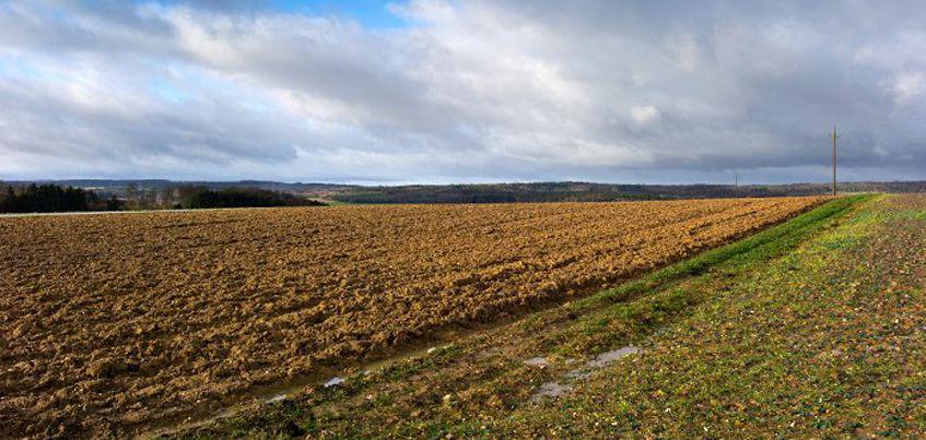 С 1 февраля жители Удмуртии смогут бесплатно получить гектар земли на Дальнем Востоке