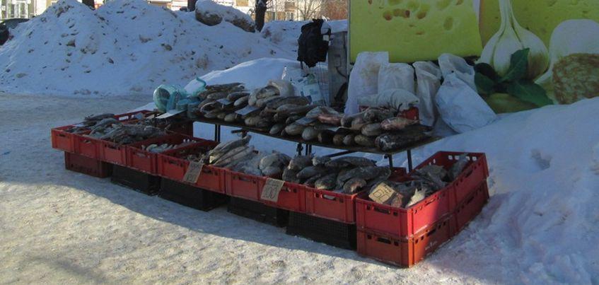 В Ижевске более 500 кг речной рыбы признали некачественной