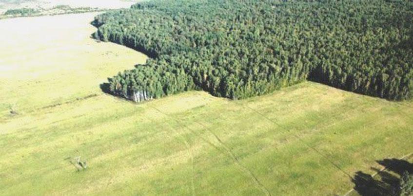 В эфире радио «Комсомольская правда»-Ижевск» расскажут, сколько жителей Удмуртии подали заявки на получение бесплатного гектара земли