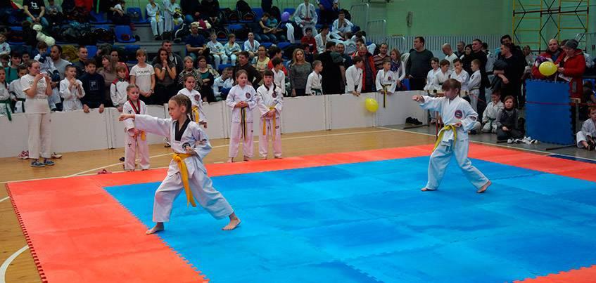 «Ростелеком» организовал прямую трансляцию с Чемпионата ПФО по тхэквондо