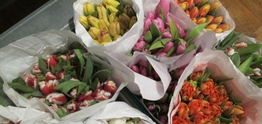 В преддверии 8 Марта в Удмуртию привезли почти 300 тысяч цветов