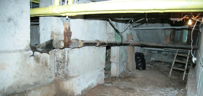 Влажность в подвале: кто виноват, что в квартире появляется черная плесень?