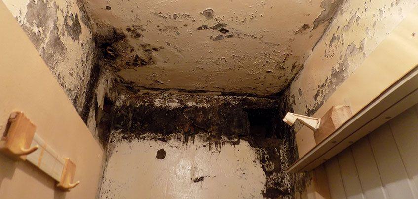 В Ижевске 600 человек живут в рушащихся общежитиях