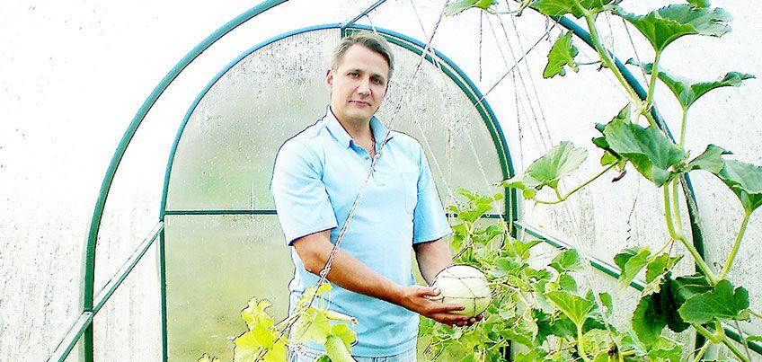Теплица мечты: как вырастить завидный урожай в Удмуртии?