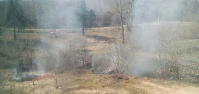 В выходные в Удмуртии 17 раз тушили горящую траву