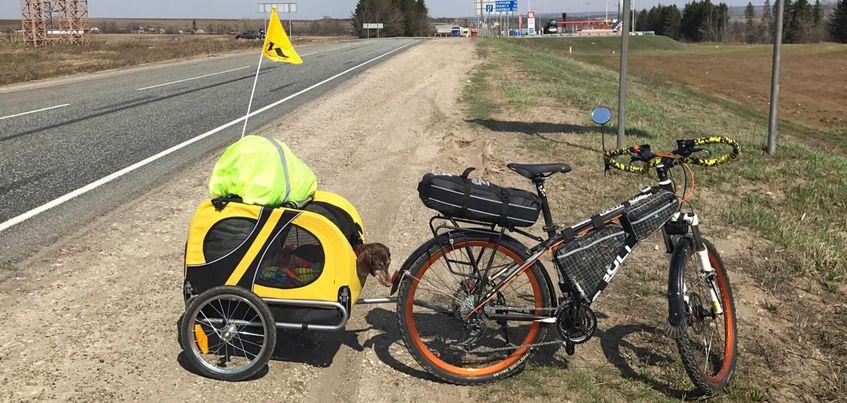 Жительница Татарстана, путешествующая на велосипеде с больной собакой, приехала в Удмуртию