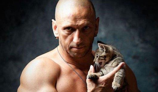 Котики продлевают жизнь мужчин