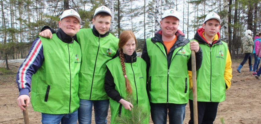 В Удмуртии восстановили рощу, которую вырубили при расширении трассы Ижевск-Сарапул