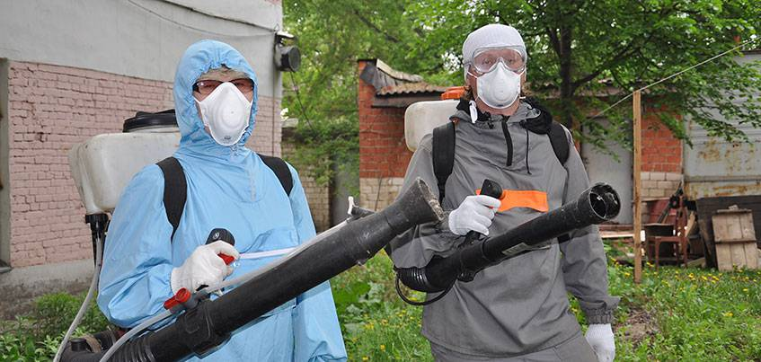 В Ижевске проводится обработка рекреационных зон от клещей