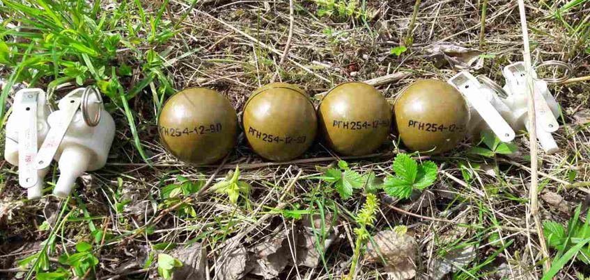 В Удмуртии сотрудники Росгвардии взорвали четыре боевые гранаты