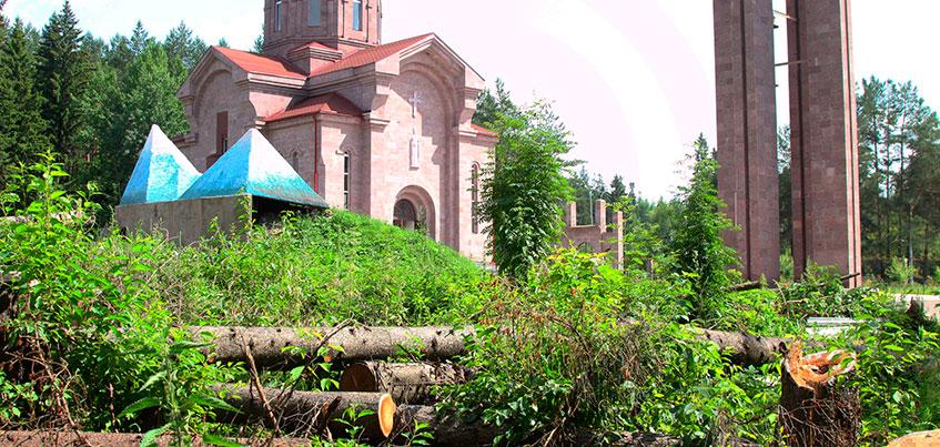 Вырубили, не спросив: в Ижевске расследуют спил 53 деревьев в лесу на улице 10 лет Октября