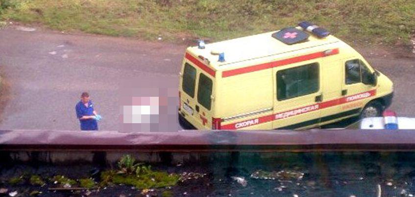 В Ижевске на улице Фруктовой водитель грузовика насмерть сбил пенсионерку