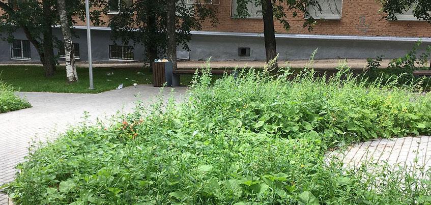 Почему сквер им. Кудинова на улице Ленина в Ижевске такой грязный?