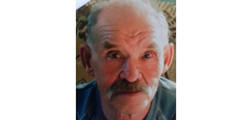 В Удмуртии ищут 75-летнего мужчину, который пропал неделю назад