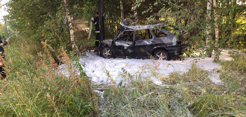 В Ижевске автомобиль врезался в дерево и сгорел