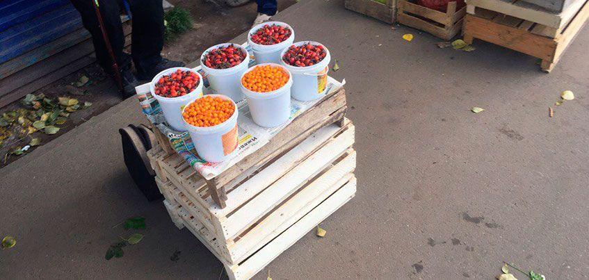 Продуктовые рынки Ижевска: где купить грибы, картофель и облепиху