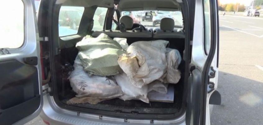В Удмуртии сотрудники полиции задержали мужчину за вылов 165 кг стерляди