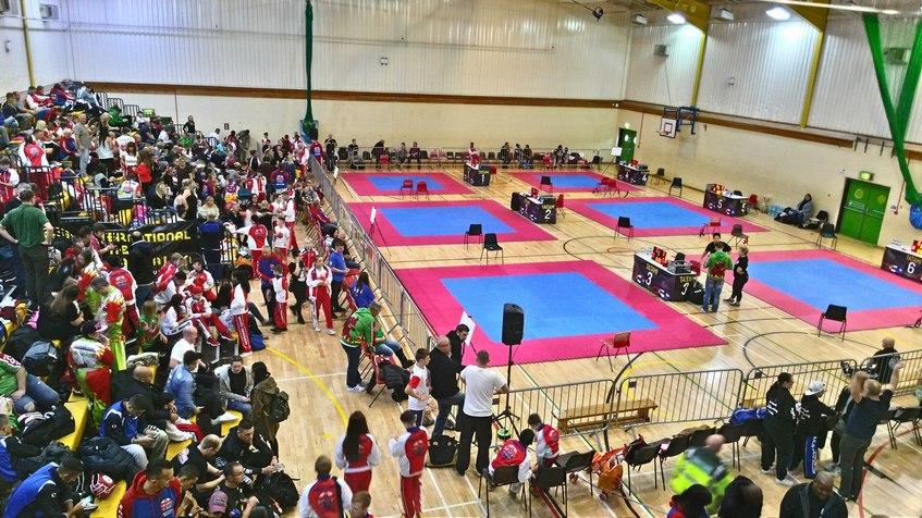 Спортсмены из Удмуртии завоевали три золотых медали на Чемпионате мира по боевым искусствам в Англии
