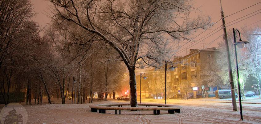 Теплый ноябрь в Ижевске: когда окончательно ляжет снег и как чувствуют себя животные в зоопарке?