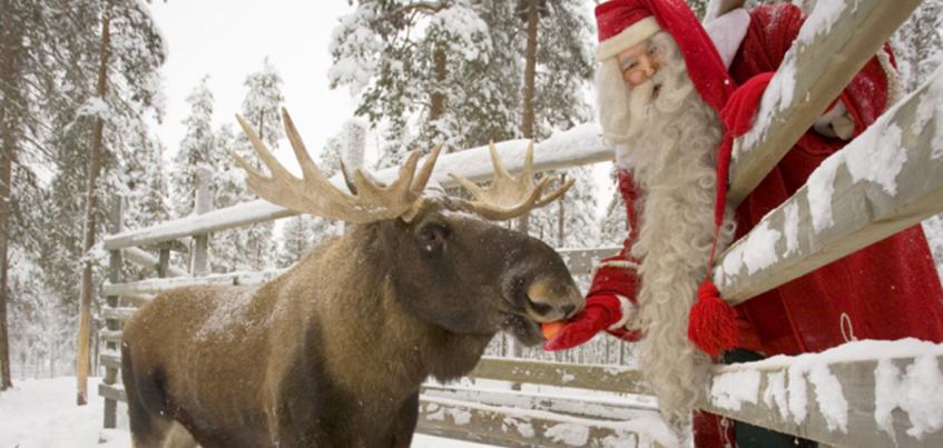 Новогоднее шоу в зоопарке и городок «Сказбург»: чем заняться 3 января в Ижевске?