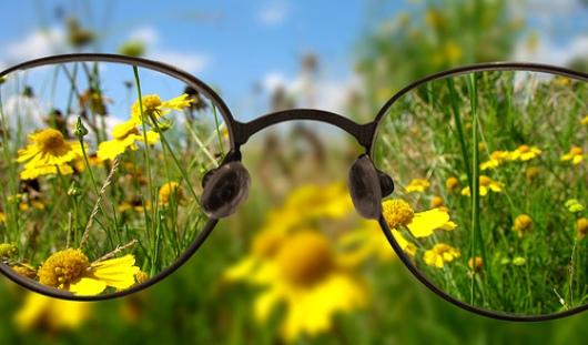 Глаз как у орла: как сохранить зрение