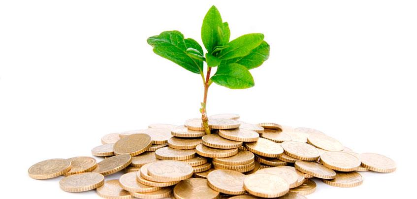 В Удмуртии создадут венчурный фонд для поддержки региональных стартапов