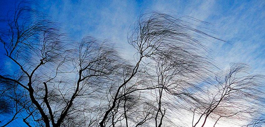 Власти Ижевска предупредили об усилении ветра и гололедице