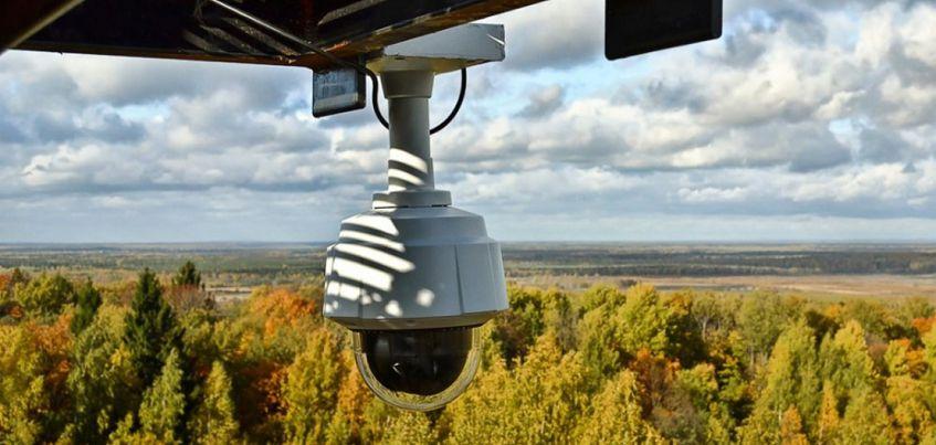 В лесах Удмуртии появятся камеры для обнаружения пожаров