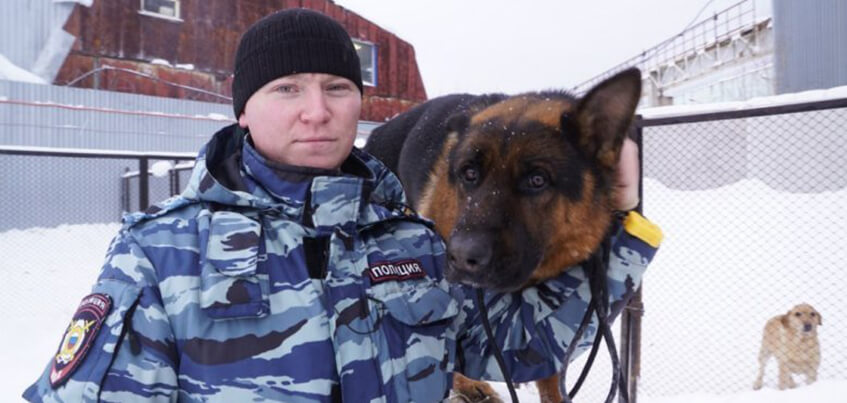 В Удмуртии кинолог с собакой спас пропавшего ребенка