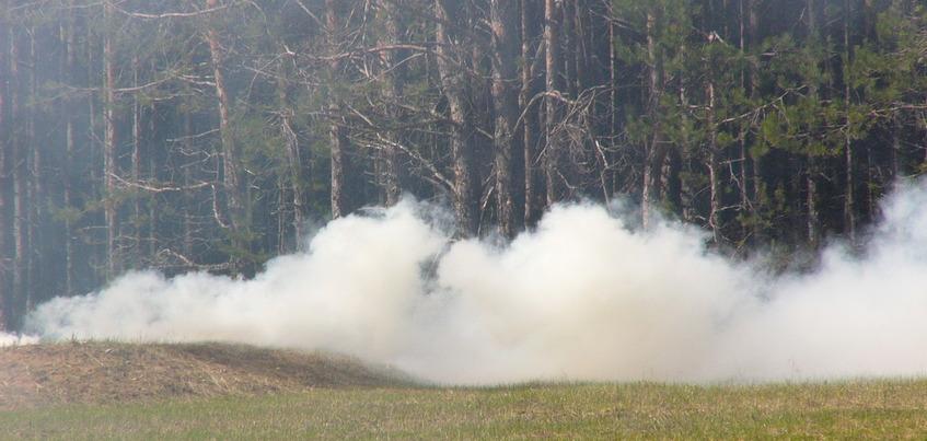 Лесной пожар потушили в Дебесском районе