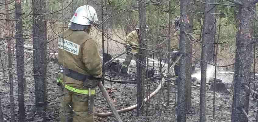 МЧС: из-за возгорания сухой травы под Ижевском сгорело 8 строений
