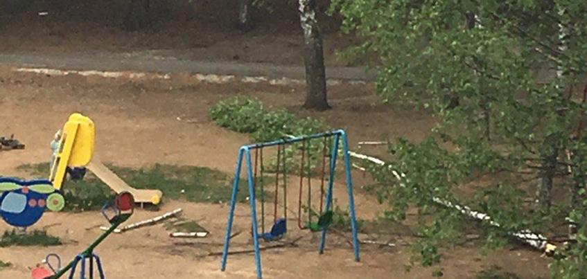 В одном из дворов Ижевска дерево упало на детскую площадку
