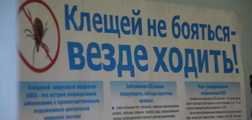 Почти 4 тысячи жителей Удмуртии пострадали от клещей за неделю