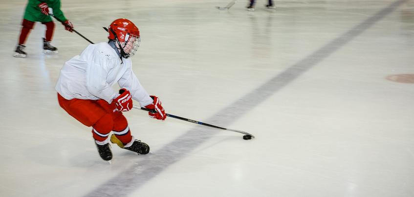 Новый дворец спорта со льдом в Можге построят в 2019 году