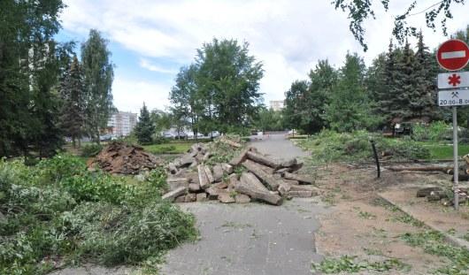 В Ижевске начали вырубку деревьев у Администрации города