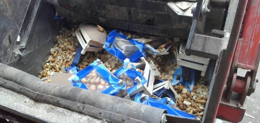Почти 1,5 тонны санкционных груш уничтожили в Ижевске